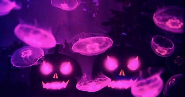 すみだ水族館ハロウィンバージョンに!「ハロウィン in すみだ水族館」 を開催