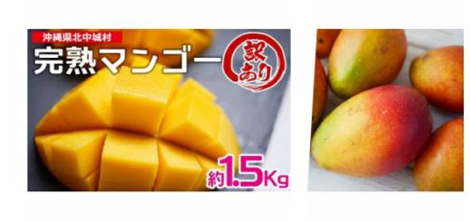 2ふるさと納税「完熟マンゴー約1.5Kg」